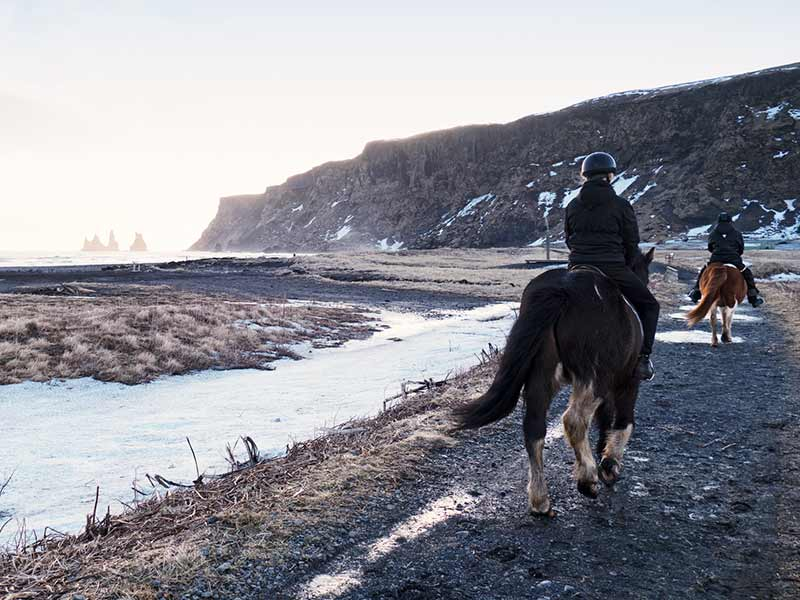 Horseback riding on the lava beach in Vik,Iceland
