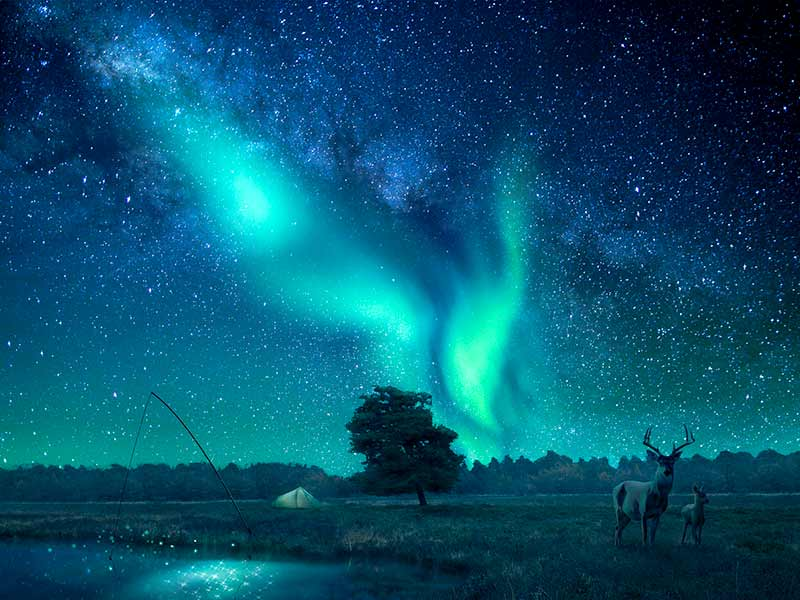 A fantasy landscape lit by northern lights/aurora borealis